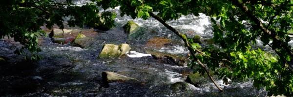 """Leinwandbild """"Steine im Fluss"""""""