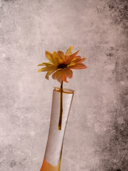 "Leinwandbild ""Blume im Glas"""