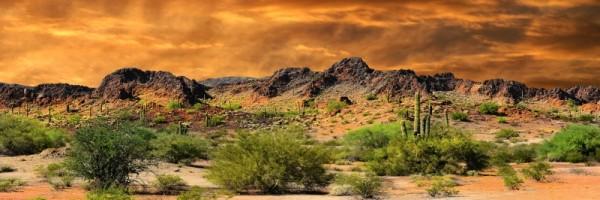 "Leinwandbild ""Landschaft Wild West"""